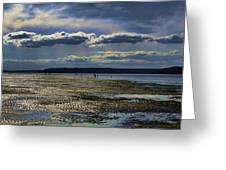 Dash Point State Park 2 Greeting Card