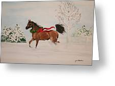 Dashing Thru The Snow Greeting Card