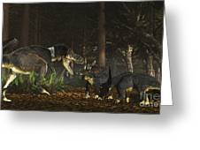 Daspletosaurus Confronts A Family Greeting Card