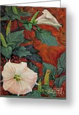 Datura Flower Greeting Card