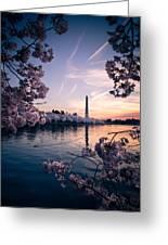 Dawn Blossoms Greeting Card