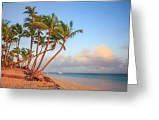 Dawn In Punta Cana Greeting Card