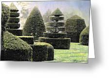 Dawn In A Topiary Garden   Greeting Card