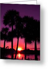 Dawn Of Another Perfect Day Greeting Card