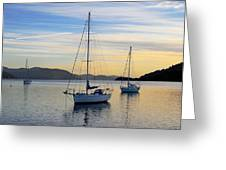 Dawn Picton New Zealand Greeting Card by Barry Culling
