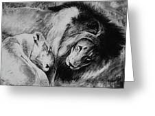 Dawn's A Coming Open Your Eyes - Lions Greeting Card