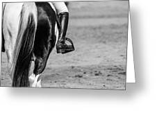 Day At The Dressage Greeting Card