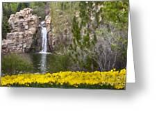Day At The Falls Greeting Card