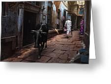Day In Varanasi Greeting Card