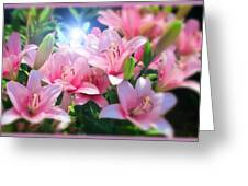 Day Light Lilies Greeting Card
