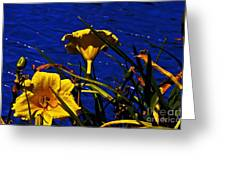 Day Lilies By The Water Greeting Card