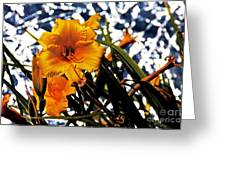 Day Lilies In  Space Greeting Card