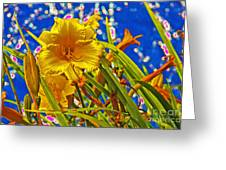 Day Lilies In The Sky With Diamonds  Greeting Card