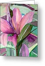 Day Lily Pink Greeting Card