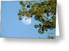 Day Moon #2 Greeting Card