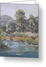 Day On The Yampa Greeting Card