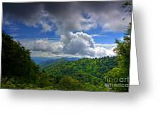 Day Tripping Greeting Card