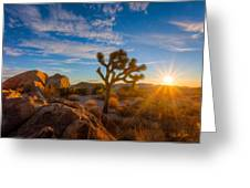 Daybreak At Joshua Greeting Card