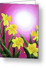 Daybreak Daffodils Greeting Card