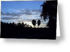 Daybreak In Florida Greeting Card