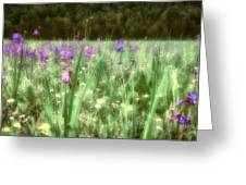 Daydreams In A Meadow Greeting Card