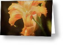 Daylily Dream Greeting Card