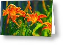 Daylily Trio Greeting Card