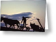 Day's End Amish Farmer Barnhill Greeting Card