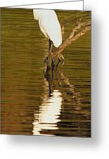 Days End With One Egret Greeting Card
