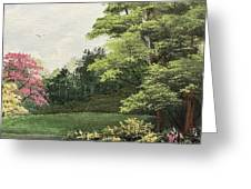 Daytime Color Greeting Card