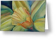 Dazzling Daffodil Greeting Card