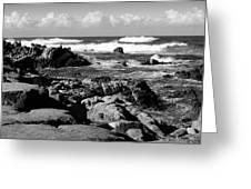 Dazzling Monterey Bay B And W Greeting Card