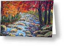Dazzling View From The Rapidan Greeting Card