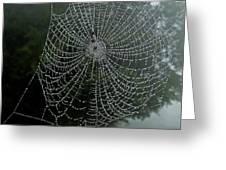 Db6325-dc Spiderweb On Sonoma Mountain Greeting Card