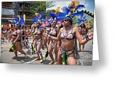 Dc Caribbean Carnival No 10 Greeting Card