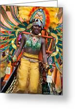 Dc Caribbean Carnival No 16 Greeting Card