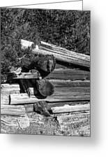 Ddp Djd B And W 1880s Log Cabin Ruins Montana 2 Greeting Card