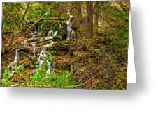 Dead Horse Creek Greeting Card