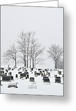 Dead Of Winter Greeting Card