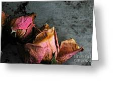 Dead Roses 1 Greeting Card