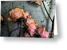 Dead Roses 3 Greeting Card