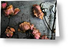 Dead Roses 4 Greeting Card