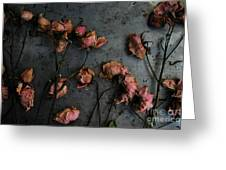 Dead Roses 6 - Photo Greeting Card