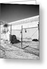 Dead Tires Palm Springs Greeting Card
