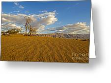 Dead Tree In The Desert  Greeting Card
