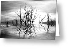 Dead Trees Bw Greeting Card