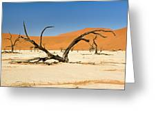 Deadvlei With Tree Greeting Card