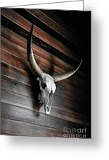 Death Of A Longhorn Greeting Card
