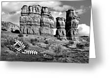 Death On Notom-bullfrog Road - Capitol Reef - Bw Greeting Card