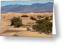 Death Valley 17 Greeting Card